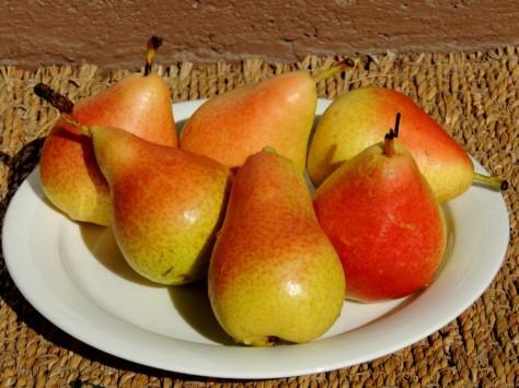 Tänään on päärynäpäivä.